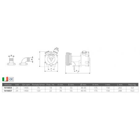 FERRO DI CAVALLO ARANCIONE - Numero
